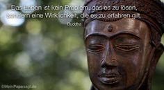 #leben,#loesen,#meistern,#dasleben,#buddha,#erfahren,#zuerfahren,#wirklichkeit,#maximumview,#christopherkaplan