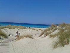 Elafonisos Lakonias, Greece Amazing Photos, Amazing Places, Cool Photos, Places In Greece, Greek Islands, Tuscany, The Good Place, Beach Mat, Travelling
