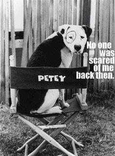 Pitty PETEY  Little Rascals