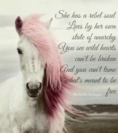 She has a rebel soul Lives by her own state of anarchy You see wild hearts can't be broken And you can't tame what's meant to be free