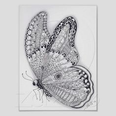 Papillon normal posters de Zazzle.fr