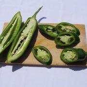 Hot Met F1 paprika: Chili típusú paprika. Termése sötétzöld hegyesedő, 10-13 cm hosszú, igen csípős. Erőteljes növekedésű, bőtermő, könnyű szedni. Chili, Pickles, Cucumber, Hot, Zucchini, Vegetables, Chile, Vegetable Recipes, Chilis