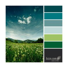 Colors of life color palette green and blue Scheme Color, Colour Pallete, Colour Schemes, Color Combos, Color Patterns, Color Palettes, Blue Palette, Colorful Decor, Colorful Interiors
