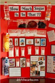 Image result for middle school science fair projects