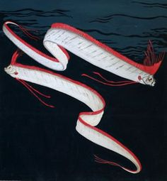 1000+ images about Oarfish for awesome on Pinterest | Fish ... Oarfish Skeleton