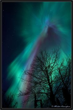 Northern Lights - Fairbanks, Alaska lived here for 4 years (sight seeing)