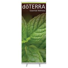 MINT ROLL UP BANNER Design Reference, Banner Design, Plant Leaves, Mint, Wellness, Plants, Plant, Planets, Peppermint