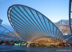 Gare do Oriente or Lisbon Orient Station, Lisbon, Portugal, 1998 | Santiago Calatrava