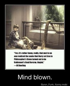 Maybe in the sense that the movies used the same snake to act the two parts, but Voldemort had Nagini long before Harry came around. She was with Voldemort at the time Harry was in the zoo. Voldemort, Harry Potter Jokes, Harry Potter Fandom, Funny Harry Potter Quotes, Harry Potter Snake, Harry Potter Stuff, Desenhos Harry Potter, Potter Facts, Funny Harry Potter