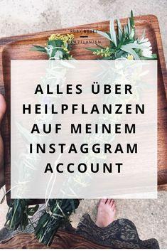 Ich arbeite seit vielen Jahren mit Heilpflanzen und auf meinem Instagram-Account teile ich meine Erfahrungen, Pflanzenwissen und Rezepte für Salben oder andere Schätze zum Nachmachen. Komm mal vorbei geguckt :-) Liebe Grüße, Ruby #heilkräuter #heilpflanzen #hausmittel #tipps #hausapotheke #Kräuterwissen