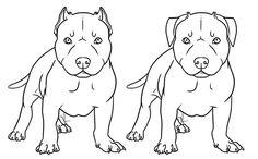 pitbull puppies drawing