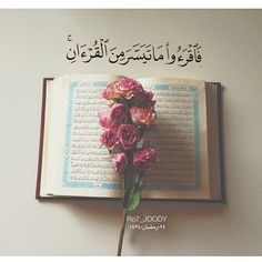 Roses on Book of Quran (with Quran 73:20 – Surat al-Muzzammil): Therefore read of the Quran as much as is made easy for you. (Quran 73:20)