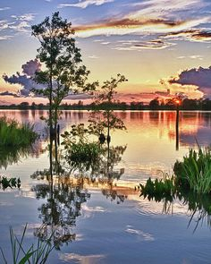 South Carolina Lowcountry