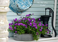 The Old Blue Bucket: Vintage Container Plantings Garden Junk, Love Garden, Garden Pots, Garden Ideas, Garden Inspiration, Vintage Gardening, Vintage Planters, Container Plants, Container Gardening