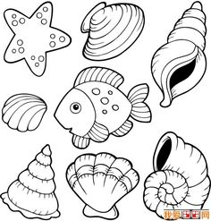 Free coloring pages of is shell