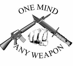 Marine Corps Martial Arts Program - MCMAP - 'One mind, any weapon.'