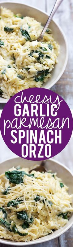 Super creamy and Cheesy Garlic Parmesan Orzo pasta!