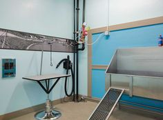 No need to take your pet to the groomers! AMLI Old 4th Ward has a fully-equipped dog washing station.