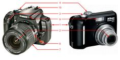 digital photographer worksheets | Body - Made of high grade plastic or metal, this holds all the ...