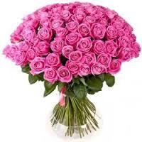 růžové růže význam - Hledat Googlem