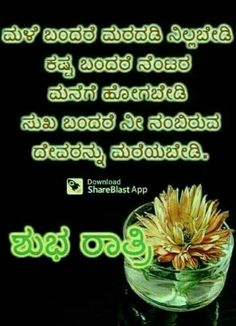 Sb Goid Night, Saving Quotes, Night Photos, Karnataka, Good Morning Quotes, Pictures Images, Love Quotes, Suitcase, Qoutes Of Love