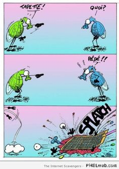 Funny French pictures - La touche d'humour Française   PMSLweb
