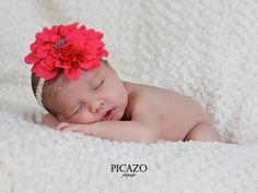www.picazofotografos.com - Fotografía infantil · recién nacido · Picazo Fotógrafos