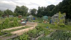 Cartmel Crescent Allotments, chadderton, oldham