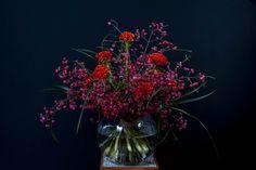 Hahnenkamm Hahnenkamm und Pfaffenhütchen Glass Vase, Plants, Red, Home Decor, Decoration Home, Room Decor, Plant, Home Interior Design, Planets