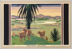 Sheep raising - New Zealand', by Gregory Brown, about 1926
