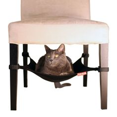 Cat Crib - Designed to fit under and attach to virtually any chair, the Cat Crib indulges your cat while leaving all the bulk and ugliness behind. It provides a subtle hidden hammock that nobody will notice—except for your kitty, of course!