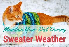 5 Rules to Maintain Your Diet During Sweater Season | thegoodstuff