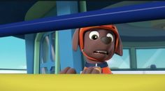 Zuma Paw Patrol, Paw Patrol Pups, Paw Patrol Party, Cute Puppies, Ears, Trunks, Deviantart, Cartoon, Humor
