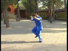 Modern Fanzi Quan by Mao Jing Guan VCD - YouTube