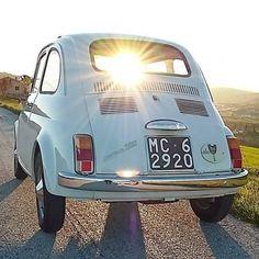 Luce dei nostri occhi! (By igersmarche on Instagram) http://ift.tt/1lxIEna - il portale del cinquecentista illuminato #fia500 #fiat500nelmondo #cinquecento #sunshine