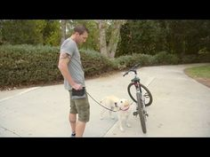 Lucky Dog - Sawyer And The Bike