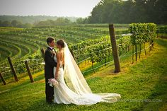 montaluce winery wedding