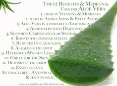 """Aloe Vera is an antioxidant and cancer fighter, especially colon cancer . Reduces and stops inflammation, both internally and externally. Oxygenates blood and energizes cells, hydrates skin and repairs skin tissue . Aloe vera heals internal digestive problems such as irritable bowel syndrome, constipation, acid reflux - cleanses the intestinal tract. Reduces risk factor for strokes and heart attacks by making """"sticky""""... To see the rest like my page   https://www.facebook.com/#!/ToneItNow"""