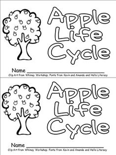 This emergent reader little book will help young students practice early reading skills, while learning about the life cycle of an apple tree!!   Throughout the book, students learn about the life cycle of an apple tree. The following vocabulary words are included: seed, sprout, roots, sapling, blossom, tree with blossoms, tree with apples, and apple.