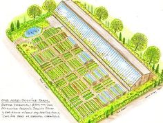 Grow enough food to feed your family on one acre