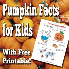 Pumpkin Facts for Kids + pumpkin life cycle