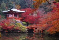 Kyoto, Japan. Photographer's dream!!! Want to go in fall or spring to see pretty leaves
