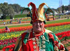 A visitor's experiences at The Tesselaar Tulip Festival in Melbourne Melbourne Attractions, Tulip Festival, Tasmania, Tulips, New Zealand, Captain Hat, Australia, Culture, Travel
