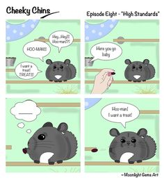 Cheeky Chins - Episode Eight - High Standards created by Chinchilla Journal