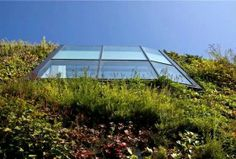 Living roof - with glass atrium feature