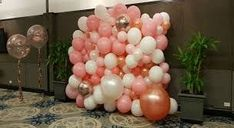 Organic balloon are widely used for decoration for events like weddings, christenings, parties, etc. Balloon HQ provides you the wide range of organic balloons at an affordable price with home delivery services in Brisbane and Gold Coast area. Balloon Wall, Balloon Arch, Balloons, Balloon Decorations, Christmas Decorations, Christmas Tree, Balloon Delivery, Brisbane Australia, Gold Coast