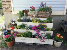 My cute sister decided to transform an old chest of drawers into a flower garden. So fun!