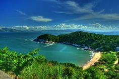 Fancy - Praia da Tainha - Bombinhas, SC - Brasil