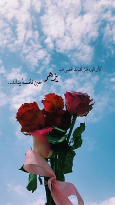 Arabic Tattoo Quotes, Funny Arabic Quotes, Cover Photo Quotes, Picture Quotes, Merida, Coffee Flower, Rose Quotes, Birth Month Flowers, Iphone Wallpaper Quotes Love