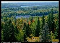 isle royale national park - Bing Images
